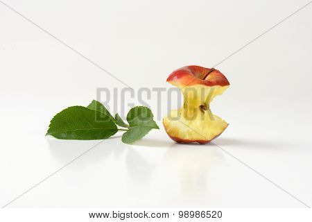 apple core and leaves on white background