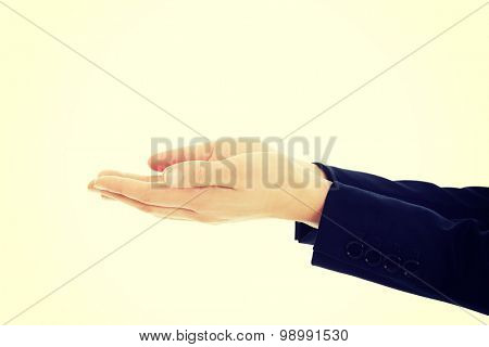 Business woman's hands holding copyspace.