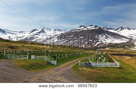 Iceland Summer Landscape. Fjord, House, Mountains