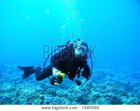 A Female Diving In Maui