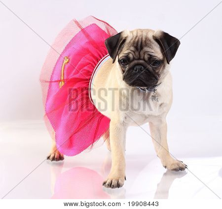 Baby Girl Mop In Pink Skirt