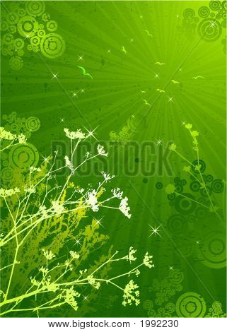 Silhouettes Of Plants, Vector