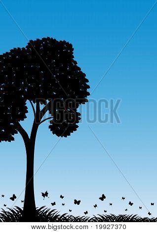 Landschaft 013