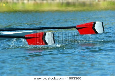Oars In The Water.