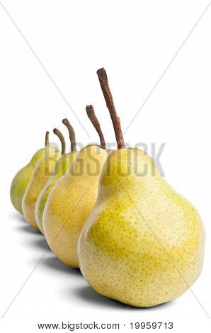 Decreasing Series Of Packham Pears On A White Background