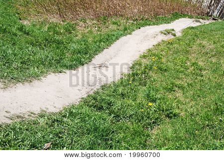 Trodden Path In The Field