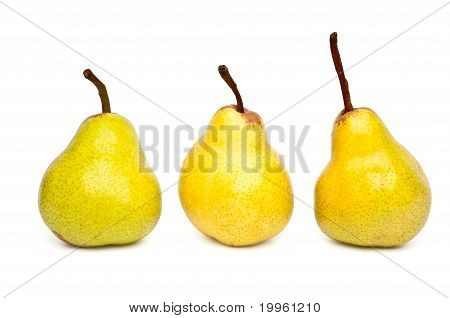 Three Packham Pears