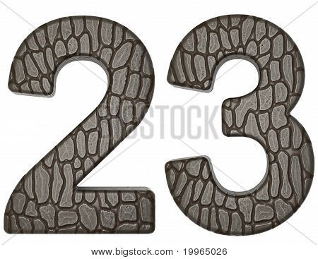 Alligator Skin Font 2 3 Digits Isolated