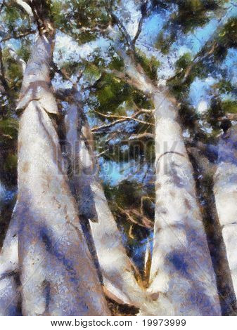 White Barked Tree Oil Painting