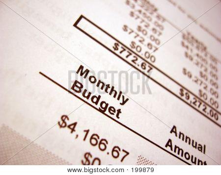 Budget 002