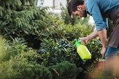 Side View Of Gardener Spraying Plants While Working In Garden poster