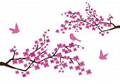 stock photo of cherry blossom  - Vector illustration of plum blossom with birds - JPG