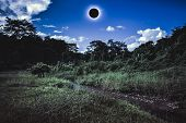 Scientific Natural Phenomenon. Total Solar Eclipse Glowing On Sky In Forest. poster
