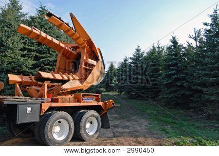 Tree Transporter