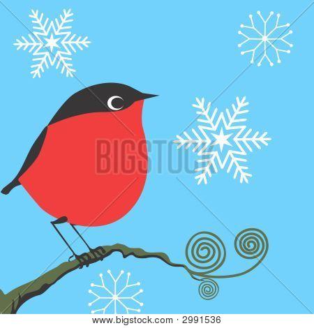 Bird,