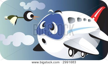 Aeroplane And Bird