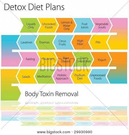An image of a detox diet plan chart.