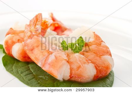 Large Shrimp