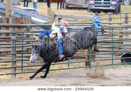 BOULDER - AUGUST 27th: unidentified cowboy rides in the bareback competition at Jefferson County Fair and Rodeo on august 27, 2011 in Boulder, Montana