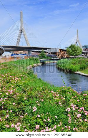 Boston Leonard P. Zakim Bunker Hill Memorial Bridge with blue sky in park with flower as the famous land mark.
