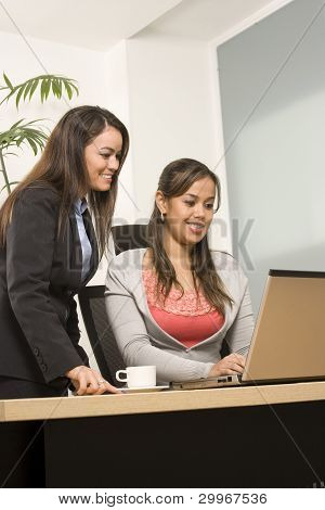 Two Businesswoman Working On Laptop