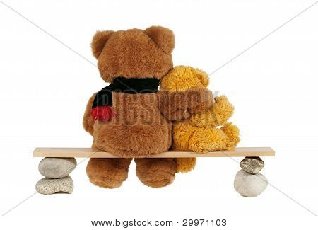 Two Teddy Bear