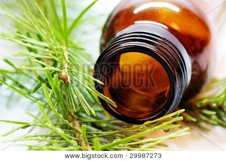 Bottle of fir tree essential oil