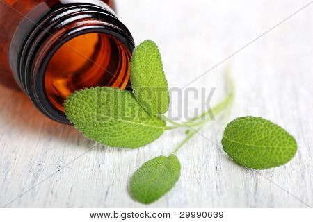 Sage herb leaves and an aromatherapy essential oil bottle