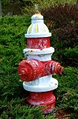 An Old Fire Hydrant Is Painted In Fading White And Red Colors. poster