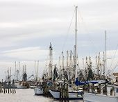 stock photo of katrina  - Your next fish fry or shrimp dinner could come from here - JPG