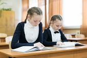 Schoolgirl Girls Write In A Notebook While Sitting At A Desk In A Classroom At School. Hair Braided  poster