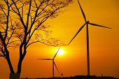 Silhouette Of Wind Turbines And Tree, Wind Turbines With Sunrise Or Sunset, Wind Turbines With Beaut poster