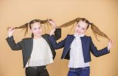 Double Ponytails Hairstyle. Girls Enjoy Having Long Hair. Hairstyle For Female. Cheerful Friends Mad poster