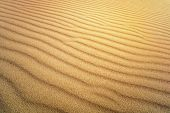 Sand Texture. Background From Fine Sand. Sand Background. Yellow Dune In The Sun. The Sun Shines On  poster
