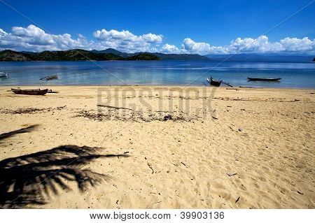 Nosy Be Rock Stone Branch Boat Palm Lagoon  Madagascar