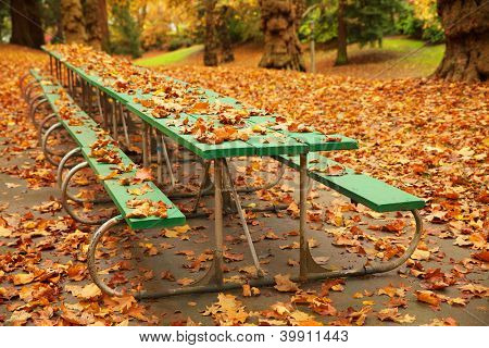 Long autumn green picnic table covered with fall leaves in a park
