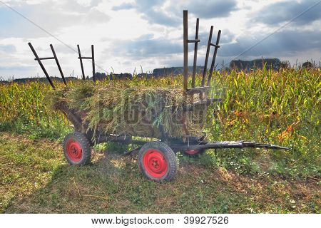 Colorful Lonely Carriage In Front Of An Cornfield
