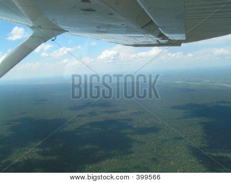 Botswana View