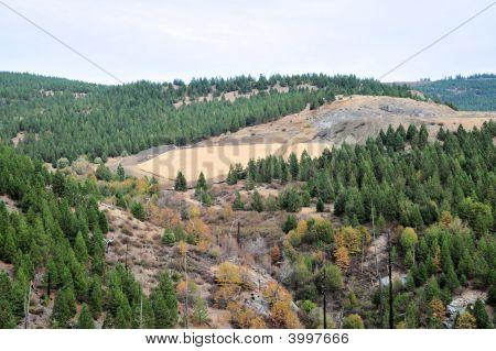 Hillside Erosion Control