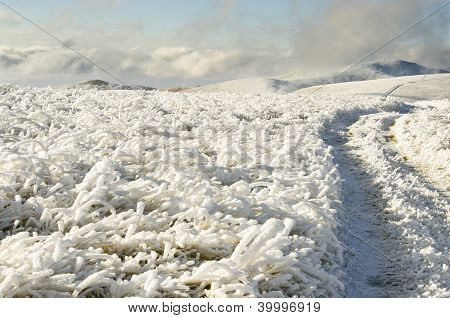 Way Through Frozen Mountains