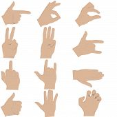foto of shiting  - many hands gestures in vector format on shite background can be used separately - JPG