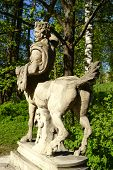 picture of centaur  - Statue of the Centaur in the Pavlovsk park St - JPG