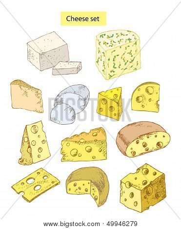 Various Cheeses on White Background