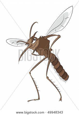 Bad Mosquito