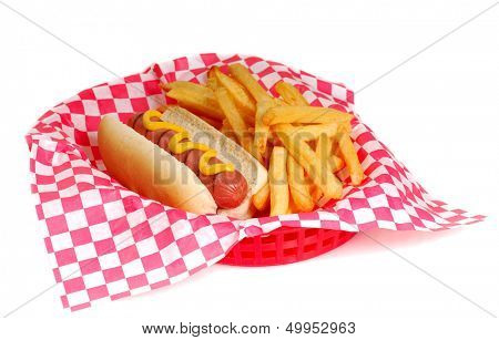 Freshly grilled hot dog with mustard and french fries in a serving basket