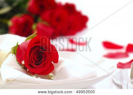 Single red rose on a dinner plate with roses and rose petals in the background