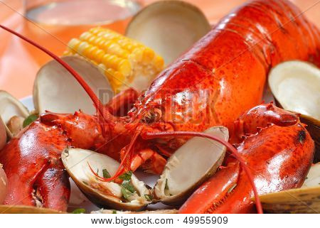Delicious boiled lobster dinner with clams, corn and potatoes