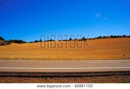 Road In The Countryside