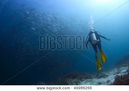 Scuba diver watching huge school of Jack fish swirling underwater