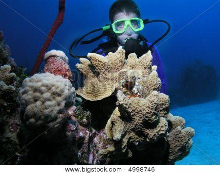 Young Male Scuba Diver Near Coral Head